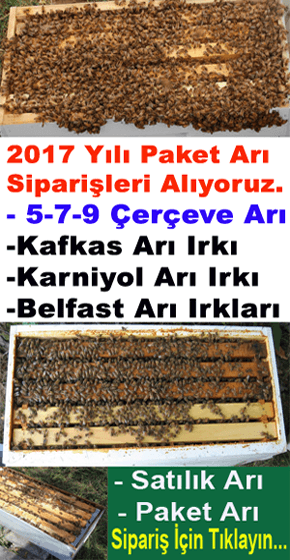 2017-yili-paket-ari-siparisi