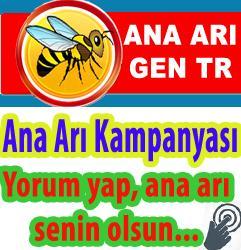 2017 ana arı kampanyası