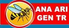 Ana Arı Üretimi ve Paket Arı Satışı