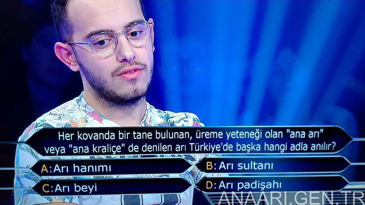 ari-beyi-sorusu