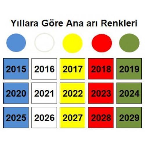 2018 Ana Arı Rengi