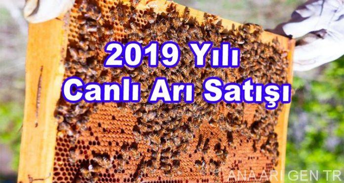 2019-yili-canli-ari-satisi
