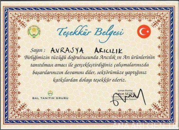 istanbul arıcılık festivali ana arı gen tr