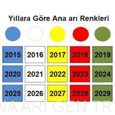 2019 Yılı Ana arı Rengi