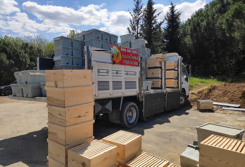2020 canlı arı satışı 5