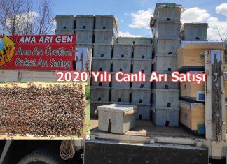 2020 yılı canlı arı satışı