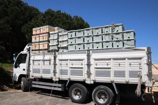 2020 yılı paket arı fiyatları 12