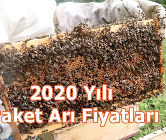 2020 yılı paket arı fiyatları