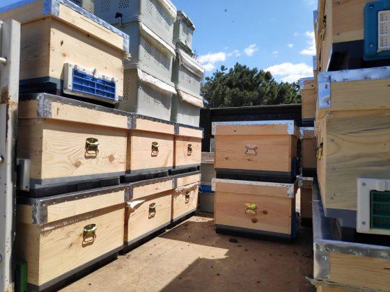 paket arı kovan 1