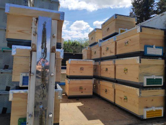 paket arı kovan 4