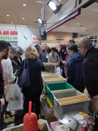 2020 haliç arıcılık fuarı - ana arı gen 5