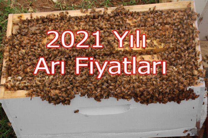 2021 yılı arı fiyatları